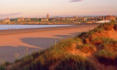 One of my favorite views: west sands in st andrews, scotland Fife Scotland, Scotland Travel, Scotland Beach, Scotland Castles, Great Places, Beautiful Places, Chariots Of Fire, St Andrews, Pilgrimage