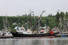 Port Hardy, BC, Canada Canada Vancouver, Vancouver City, Vancouver Island, British Columbia, Us Travel, Travel Photos, Boats, Coastal, Pride