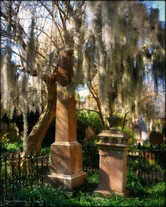 Unitarian Universalist Cemetery, Charleston, South Carolina