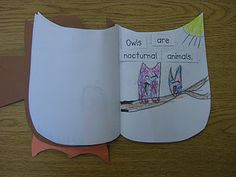 Nonfiction owl book. Kids work on one fact each day.