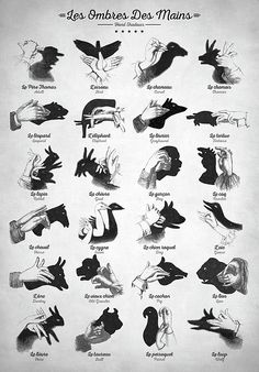hand shadows, shadowgraphy, shadow play, ombromanie, finger shadow, puppet art, performing arts, childsplay, bedroom wall art, finger shadow art, hand shadow animals, vintage hand shadow, antique, antique nursery wall art, antique nursery decor, vintage nursery decor, vintage nursery art, animal print illustration, vintage illustration, shadow puppets, children's print, hands animals whimsical nursery art, antique illustration, kids room wall art, silhouette