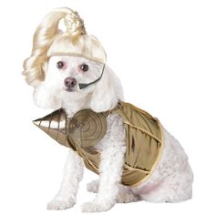 Pop Queen Extra Small Pet Costume