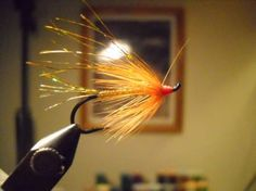 Feather River Flash