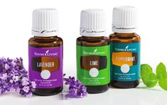I am so excited to tell you all the different ways me and my crazy family have started to use Young Living Essential Oils.