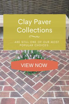 We have seen a big demand in Clay Pavers, being the ideal product for paving a driveway, creating a path or designing a courtyard patio. Brick Paving, Paving Stones, Buy Clay, Clay Pavers, Garden Paving, Garden Design, Latest Trends, Patio, Big