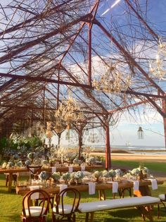 Incredible Installation by Tea Rose Events and our Bentwood Chairs & Benches www.balieventhire.com