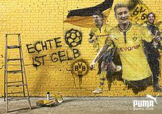 Puma – Dortmund