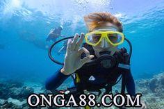 (부체체험머니♛【 ONGA88.COM 】♛체험머니험머니♛【 ONGA88.COM 】♛체험머니산=연합뉴체험머니♛【 ONGA88.COM 】♛체험머니스) 체험머니♛【 ONGA88.COM 】♛체험머니영규 기자 = 범죄 혐의가 포착되면 곧바로 잠적, 정관계 인맥을 동원해 수사 체험머니♛【 ONGA88.COM 】♛체험머니