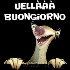 Good Day Messages, Italian Greetings, Cute Stuffed Animals, Illustrations And Posters, Say Hello, Good Morning, My Friend, Funny Jokes, Emoticon