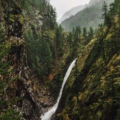 gorge creek. northern cascades. washington.