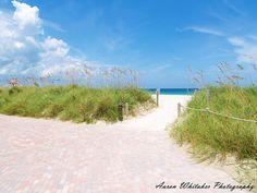 South Pointe Park - Miami Beach FL by Aaron Whitaker, via Flickr