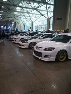 Pearly whites lined up #importfest
