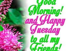 Top10 Frases de Amor ingles-7 Happy Tuesday! ARTICLES IN ENGLISH Days the week  weekend web content nice love phrases love site Love quotes Happy Tuesday! gma friendship phrases content in english birthday best friends