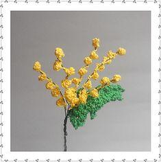 Mimosa_small2