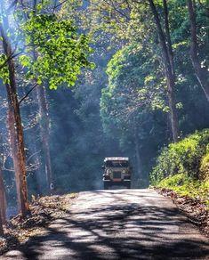 Amazing Kerala (@amazingkerala) -12.3k Followers, 610 Following, 444 | A Jeep through Gavi, Pathanamthitta Kerala Travel, Kerala Tourism, India Travel, Village Photography, Travel Photography, Dslr Background Images, Indian Village, India Culture, Kerala India