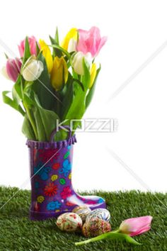 tulips with easter eggs on grass - Tulip flowers with Easter eggs on grass against white background