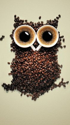 Funny Coffee Owl - iPhone Hd Wallpapers