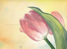Tulpe I. Watercolour painting by Antje Bednarek-Gilland, 24 x 32 cm.