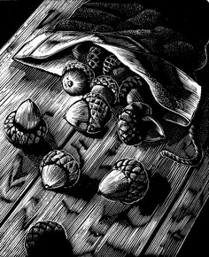 """A Michael McCurdy print from """"The Man Who Planted Trees""""--all the hope of the future in a bag of acorns.  Here the woodcut represents the perfect union of subject matter and media."""