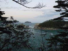 ≪Present Tree in 宮古≫ 被災地視察_20121007 山の上から見た浄土ヶ浜の様子です。