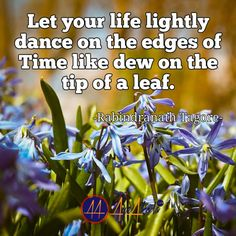 Let your life lightly dance on the edges of Time like dew on the tip of a leaf. -Rabindranath Tagore  http://ayeakoda.com  #business #workard #smm #leadership #workfromhomemoms #fitfam #blogger #girlswholift #hustle #mlm #instagramers #hardwork #inspiration #stayathomemom #homebasedbusiness #onlinecoaching #selfemployed #entrepreneurship #startup #socialmedia #smm #financialfreedom #independent #empire #nolimits #strategy