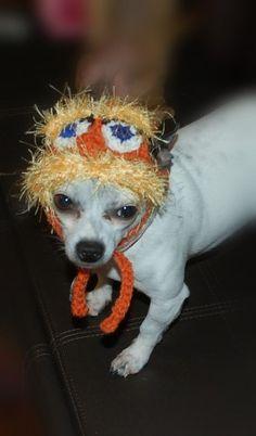 Lomax Dog hat