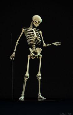 SkeletonPosedSmall.jpg