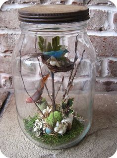 Nest in a Jar Assemblage Crafts With Glass Jars, Mason Jar Crafts, Bottle Crafts, Mason Jars, Fairy Lanterns, Deco Nature, Fairy Jars, Jar Art, How To Preserve Flowers