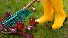 Im Oktober steht das Laubrechen ganz oben auf der Liste der Gartenarbeiten. (Quelle: Thinkstock by Getty-Images)