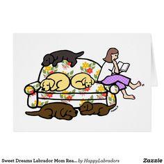 Sweet Dreams Labrado