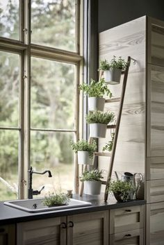 If you love cooking with fresh herbs, go for a vertical garden in your kitchen. Place near a window and next to the sink for maximum sunlight and easy watering. These pots hook onto the wooden ladder-style stand, which takes up minimal worktop space. Satsumas plant stand, £30, Ikea