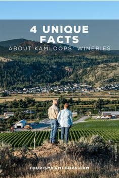Kamloops is one of the northernmost grape growing areas with four wineries, six vineyards, and 120 acres under vine. Discover these 4 hidden gems and little known facts about them. Cider Making, Unique Facts, Home Buying Tips, Growing Grapes, Shop Local, Unique Recipes, Wineries, Estate Homes, British Columbia