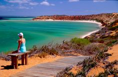 Days 2 and 3 in Shark Bay, WA: Take a 4WD tour into Francois Peron National Park to explore the rich red sand dune landscape and stunning turquoise waters surrounding the Peron Peninsula. At Skipjack Point you will have stunning views of local marine life including rays, turtles and sharks.