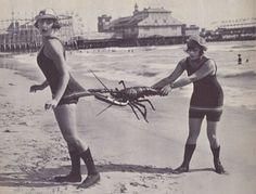 Flapper Girls on the Beach photography black and white beach vintage retro models flapper old photos Vintage Pictures, Old Pictures, Vintage Images, Old Photos, Vintage Beach Photos, Beach Fun, Summer Beach, Summer Fun, Long Beach