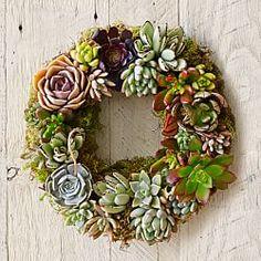 Door Wreaths, Decorative Wreaths & Garland Hangers   Williams-Sonoma - Mixed Succulent
