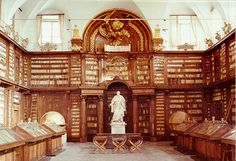 all the dream elements ... carvings, statuary, globe and books at the Casanatense Library in Rome, Italy