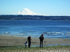 Summer day on Vashon Island, WA, lived from 1983 to 1996.  LOVED IT.
