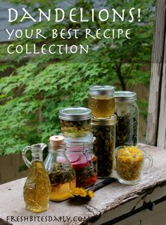 Dandelions! Your best recipe collection