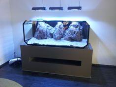 Design Aquarium 2