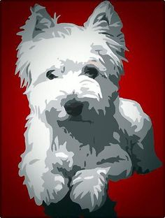 westies in art Animals And Pets, Cute Animals, West Highland Terrier, Terriers, Terrier Mix, White Terrier, White Dogs, Scottie Dog, Dog Portraits