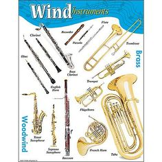 Sharp, full-color photos illustrate a variety of wind instruments, both woodwind and brass. Use alone or pair with TREND's Percussion Instruments and String Instruments charts. Extra Value: Reproducibles on back. Bassoon, Oboe, English Horn, English Class, Bass Clarinet, Saxophone, Violin, Teaching Supplies, Musicals