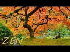 Zen garden relaxing music and jungle nature sounds to relax and meditation, Asian music and zen rainforest water river sounds, a peaceful oriental bamboo flu. Meditation Musik, Buddhist Meditation, Relaxation Meditation, Chakra Meditation, Calming Music, Relaxing Music, Feng Shui Garden, Beginner Art, Yoga Music