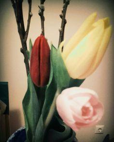 Tulipánok barkával