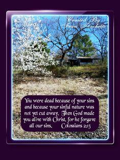 Bible Verse For Today, Bible Verses, Bible Forgiveness, Colossians 2, Christ, God, Nature, Dios, Naturaleza