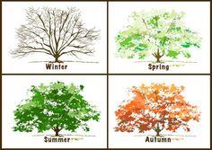 Beautiful, Free Clip Art for the 4 Seasons: The Four Seasons