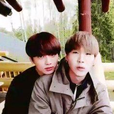 """#wattpad #de-todo ❝Razones para shipear YoonKook/Sukook.❞  """"¿YoonKook, Sukook? ¿Qué es eso? ¿Se come?""""  No amigo mío, el Yoonkook es la Couple que pocos notan y que es hermosa para varixs A.R.M.Y's  YoonGi + JungKook.  Si no shipeas el Sukook, estas razones te pueden hacer que empieces a Shippearlo.  ¡Welcome!  ✧Pri..."""