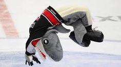 Bildergebnis für kölner haie