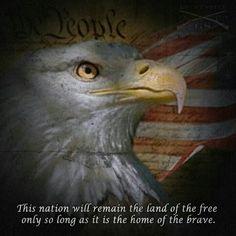 .http://www.ebay.com/usr/americanflag911