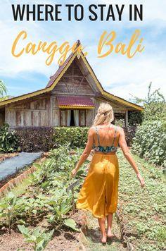Where To Stay In Canggu Bali
