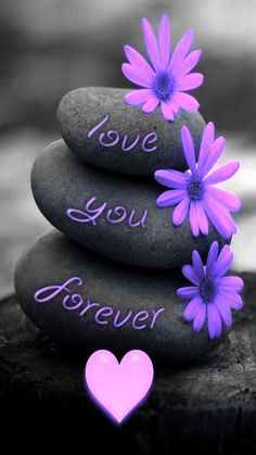 Valentine's Day Quotes : Valentines day wallpapers backgrounds for girlfriend boyfriend. Valentines Day Sayings, Happy Valentines Day Images, I Love You Images, Love You Gif, Love Pictures, Beautiful Pictures, Purple Love, All Things Purple, Heart Wallpaper